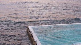 People swimming at Bondi Icebergs stock video