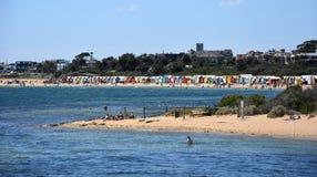 People swimming on Brighton Beach Stock Photography