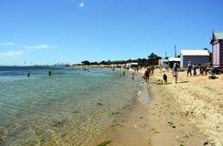People swimming on Brighton Beach Stock Image