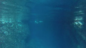 People swimming in cave, underwater shot, Bisevo island, Croatia stock video