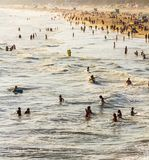 People swimming in the ocean Royalty Free Stock Image