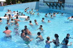 People swimming in the pool Stock Photography