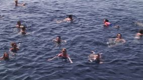 People swimming in sea. Party on yacht. Vacation. Sunny day. Blue water. stock video