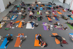 People take a class at Yoga Festival 2014 in Milan, Italy Royalty Free Stock Photos