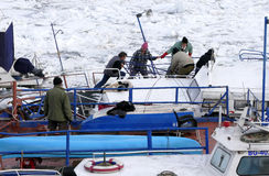 People take out trapped boat from the frozen Danube river Stock Image