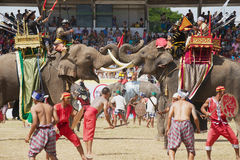 People take part in the Elephant show in Surin, Thailand. stock photo