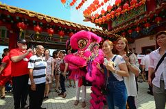 People taking photo with lion dancer Stock Photography