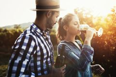 People tasting wine in vineyard. Happy people tasting wine in vineyard Royalty Free Stock Photos
