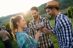 People tasting wine in vineyard Stock Photo