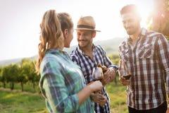 People tasting wine in vineyard Stock Photo