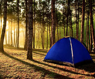 People to extend a tent on the hill Royalty Free Stock Photos