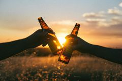 People toasting with beer Stock Images