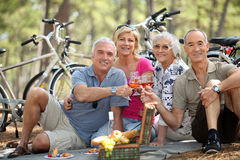 People toasting at picnic. Four senior people toasting at picnic Stock Image