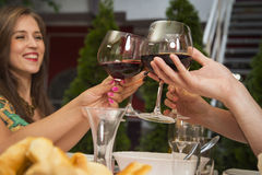 People toasting with wine at a restaurant. Royalty Free Stock Photo