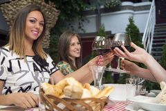 People toasting with wine in restaurant. Royalty Free Stock Photo