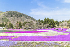 People from Tokyo and other cities come to Mt. Fuji and enjoy th Royalty Free Stock Images