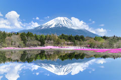 People from Tokyo and other cities come to Mt. Fuji and enjoy th Royalty Free Stock Image