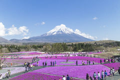 People from Tokyo and other cities come to Mt. Fuji and enjoy th Royalty Free Stock Photography