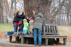 People Touching The Aincient Oak. Group of people touching the 2 centuries old oak tree to get its  nature power and wisdom Stock Photo