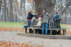 People Touching The Aincient Oak Royalty Free Stock Photos