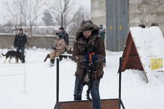People train their dogs, dog walking. Russia Ivanovo 24 December 2017, people train their dogs, dog walking, editorial Stock Photo