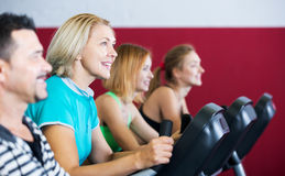 People training on exercise bikes together Stock Photography