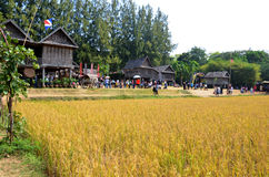 People travel and playing at Jim Thompson Farm Royalty Free Stock Image