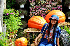 People travel and and take photo with big pumpkin at Jim Thompso Stock Photos