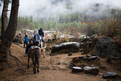 People traveling to Taktshang Goemba by horse Royalty Free Stock Photo
