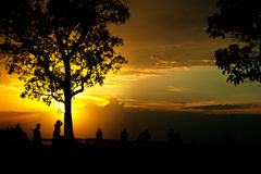 People and tree silhouette. At viewpoint in sunset Stock Photography