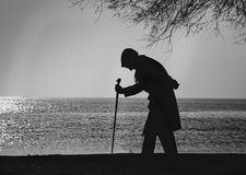 People and Trees, Elderly woman walking on a cane. Old woman who walks on the beach walking stick between old trees Royalty Free Stock Photos