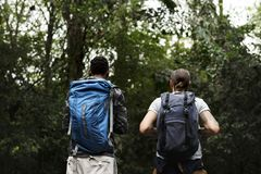 People trekking in a forest Royalty Free Stock Photo