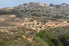 People trekking over the Cliffs on the beach,  Vila Nova de Milf. Ontes, Alentejo, Portugal Stock Images