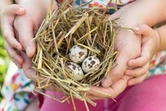 People of two generations holding nest in arms Stock Photo