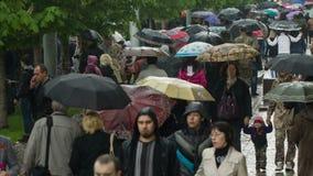 People with Umbrellas Walk Under the Rain 1 stock video