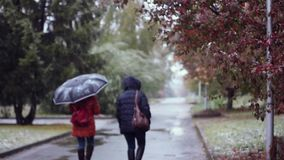 People with umbrellas walking in the street in a snowy and rainy autumn wet day. 1920x1080 . Depressive weather. People walking in the street in a snowy winter stock video