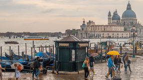 People with umbrellas on the waterfront in Venice Stock Photography