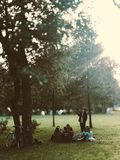 People Under Green Leaf Trees on Green Grass Royalty Free Stock Images