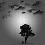 The people under a tree Royalty Free Stock Photography
