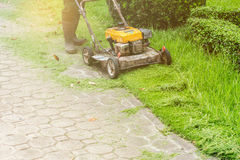 People are using lawn mowers. People are using lawn mowers in the garden Stock Photos
