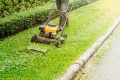 People are using lawn mowers. People are using lawn mowers in the garden Stock Image