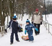 People using a sled in the winter Stock Images