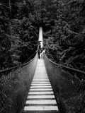 People on a very long suspension bridge. In the forrest stock photo
