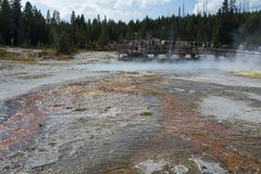 People viewing geyser pool in Yellowstone National Park Stock Photography