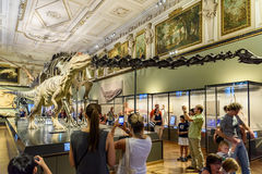 People Visit Dinosaur Prehistoric Exhibit At The Museum of Natural History (Naturhistorisches Museum). VIENNA, AUSTRIA - AUGUST 09, 2015: People Visit Dinosaur Royalty Free Stock Image