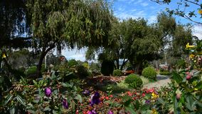 People visit the park of Dalat city stock footage