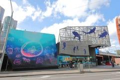 Aquarium Melbourne Australia. People visit Sealife Aquarium in Melbourne Australia royalty free stock photos