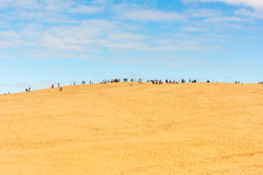 People visiting the highest sand dune of Pyla in Europe Royalty Free Stock Image