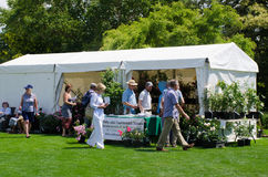 People visiting outdoor rose tent Royalty Free Stock Photography