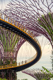 People visiting the Supertree grove at Gardens by the Bay, in Singapore Stock Image